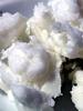 Karité, beurre naturel