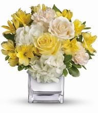 Bouquet «Sweetest Sunrise» <br>de Téléflora