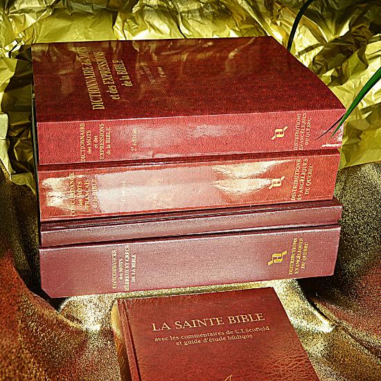 Un ensemble de Livres Projet Timothée - imprimé