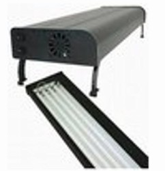 T5 Fluorescent Fixtures & Components