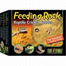 Exo Terra Cricket Feeding Rock