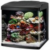Coralife Biocube 32 Gallon - With LED Lighting