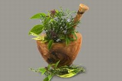 Organic medicinal plants
