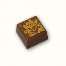 ax681 square chocolate mold