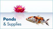 Ponds and Supplies